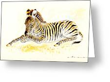 Mountain Zebra Greeting Card
