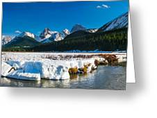 Mountains In Spring Greeting Card