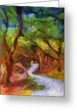 Muckross Woods Greeting Card