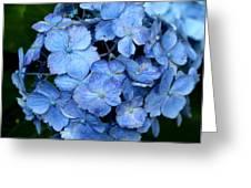 My Blue Heaven Greeting Card
