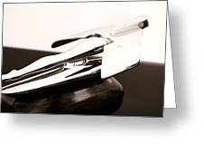 Nash Hood Ornament Greeting Card