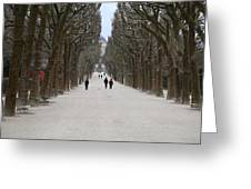 National Museum Of Natural History - Paris France - 01131 Greeting Card by DC Photographer