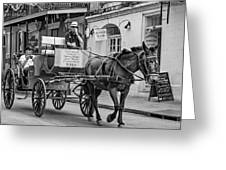 New Orleans - Carriage Ride Bw Greeting Card