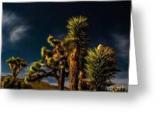 Night Desert Greeting Card