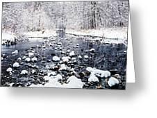 Nine Mile Creek Greeting Card