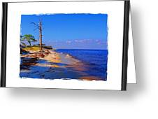 North Florida Beach Greeting Card