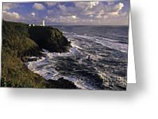 Northhead Ilwaco Lighthouse Greeting Card