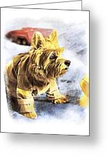 Norwich Terrier Fire Dog Greeting Card