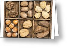 Nuts In Rustic Wooden Box Greeting Card