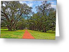 Oak Alley 3 Greeting Card