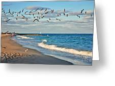 1- Ocean Reef Park Greeting Card