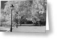 October Infrared Greeting Card