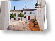 Old Town In Cordoba Greeting Card