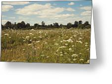 On The Summer Meadow. Russia Greeting Card