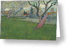 Orchards In Blossom Greeting Card