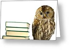 Owl At A Book Pile Greeting Card