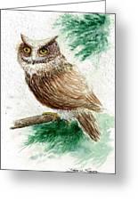 Owl Study Greeting Card