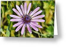 Oyster Plant Greeting Card