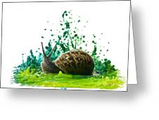 Paint Sculpture And Snail  Greeting Card