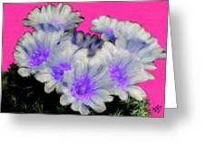 Painterly Cactus Flowers Greeting Card