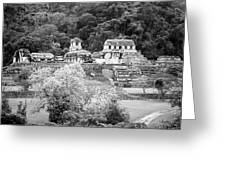 Palenque City Greeting Card