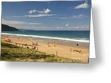 Palm Beach Sydney Greeting Card