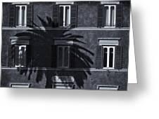 Palm Tree Greeting Card