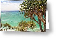Pandanus Palm Tree Greeting Card