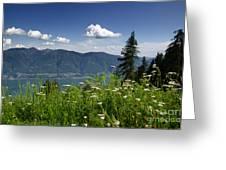 Panoramic View Greeting Card