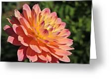 Peach Day Greeting Card