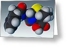 Penicillin V Molecular Model Greeting Card