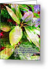 1 Peter 3 17 Greeting Card
