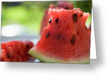 Pieces Of Watermelon Greeting Card