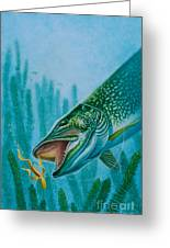 Pike And Jig Greeting Card