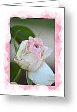 Pink Lady 2013 Greeting Card