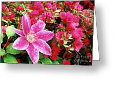 Pink Path Greeting Card