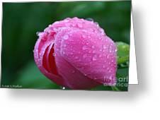 Pink Rain Drops Greeting Card