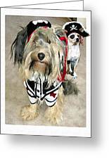 Pirate Dogs Greeting Card