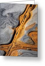 Point Lobos Abstract 4 Greeting Card