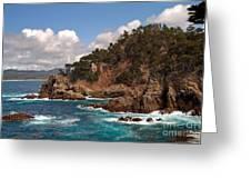 Point Lobos Greeting Card