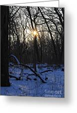 Point Of Light Greeting Card