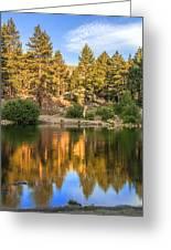 Golden Pond Greeting Card