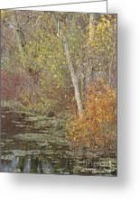 Pondside Pastel Greeting Card