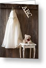 Pretty Dress Greeting Card