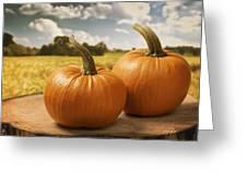 Pumpkins Greeting Card by Amanda Elwell
