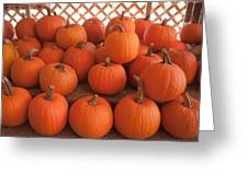 Pumpkins On Pumpkin Patch Greeting Card