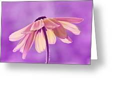 Purple Soft Greeting Card