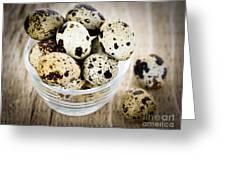 Quail Eggs Greeting Card