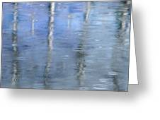Raindrops On Reflections Greeting Card