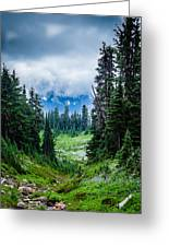 Rainer Glacial Meadow Greeting Card